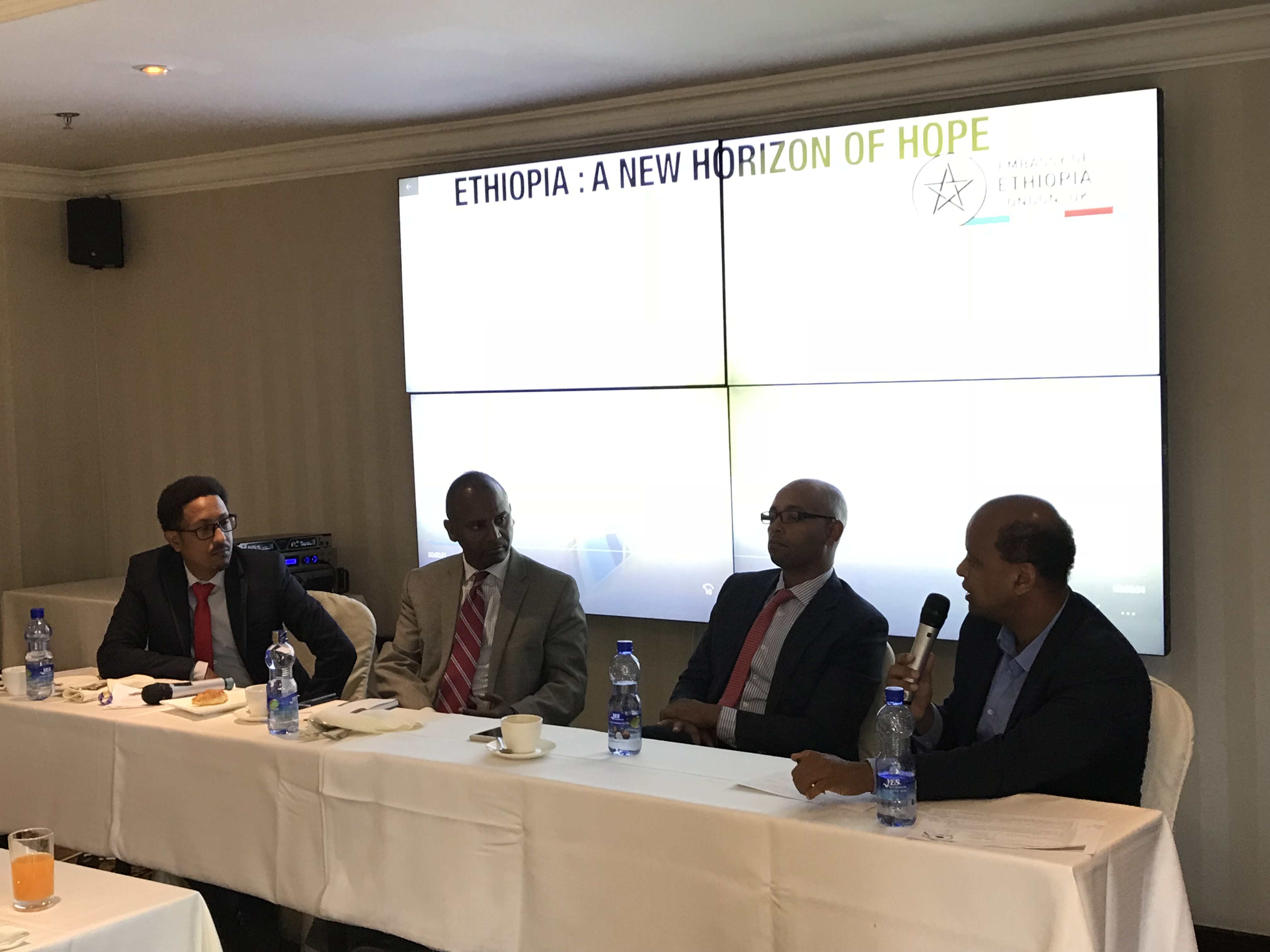 panel-discussion-on-the-mid-term-economic-future-of-ethiopia-held